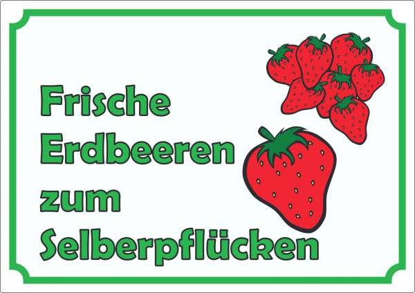 Werbeaufkleber Aufkleber Erdbeeren zum selberpflücken